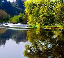 Clashganny, County Carlow, Ireland by Andrew Jones