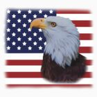 Bald Eagle and US Flag T-shirt by Delores Knowles