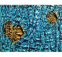 Underwater Wood 3 Photographic Print