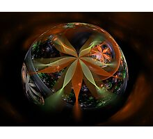 A Floral Globe for Autumn Photographic Print