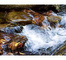 Fall Rush Photographic Print