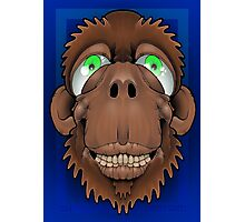 Silly Monkey Photographic Print