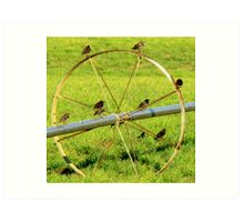 Birds On A Wheel Art Print