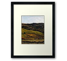 Late Fall Pasture Framed Print