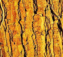 Tree by razberryjam