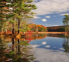 Harvard Pond by JRCollection