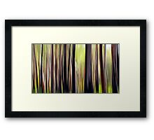 The Bush Framed Print
