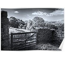 Martindale Pseudo Infrared Poster