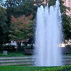 Fall fountain downtown by Tracey Hampton