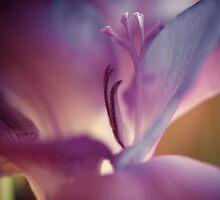 freesia, mauve by narelle sartain
