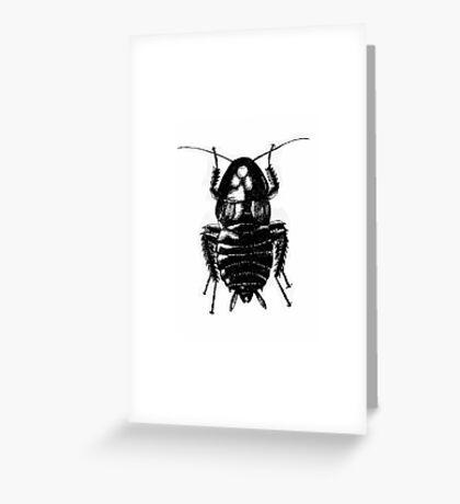 Blatella Orientalis, The Oriental Cockroach Greeting Card