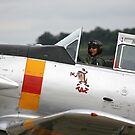 T-6 Harvard Pilot by Wayne Gerard Trotman