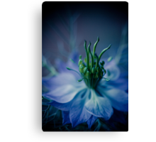 sunday in blue, surreal flower macro. Canvas Print