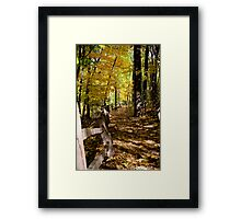 Path of fall Framed Print