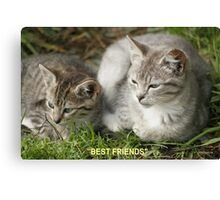 Best Friends, Tabby Kittens Canvas Print