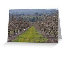 Oregon Vineyard Greeting Card