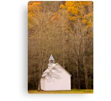 lords voice Canvas Print