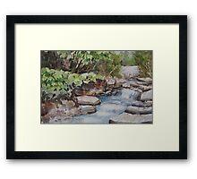 River Rush Framed Print