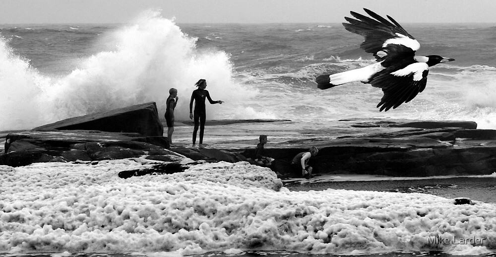 """Storm Boys"" Angourie by Mike Larder"