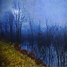 Blue Night by Mary Ann Reilly