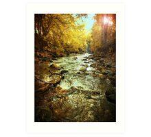 American Fork River - Downstream Art Print