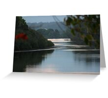 Late afternoon Bellinger River Greeting Card