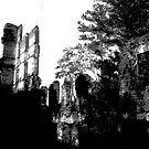 old mill by Lloyd Sherman