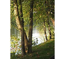 Looking Through Trees Along The Seine Photographic Print