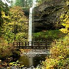 Silver Falls clad in gold by worldtripper