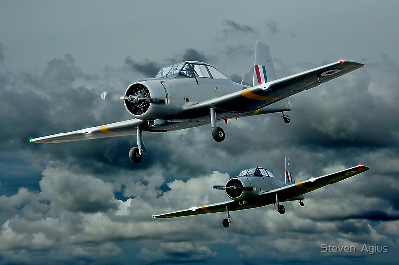 Flight of the Winjeels by Steven  Agius