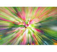 Flower Rush Photographic Print