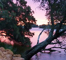 Sunset over the Collie River, Eaton, Western Australia by balticblossom
