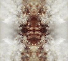 Silkworm by Nico  van der merwe