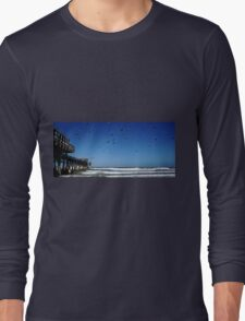 Pigeons At The Beach Long Sleeve T-Shirt