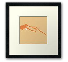 Charizard Framed Print