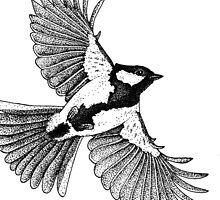 Songbird in flight by Dotsdotsdots