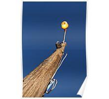 Daylight lamp light Poster