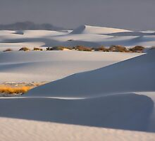 Shadows At White Sands by CarolM