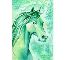 May Emerald Horse Watercolor Painting Photographic Print