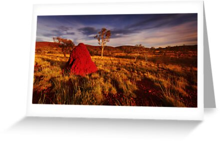 Colours of the Pilbara by Mark Shean