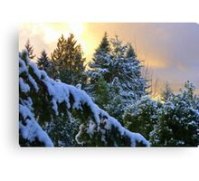 Frosty Alpenglow Canvas Print