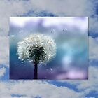 Spring Breeze by Sheri Nye