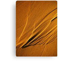 Sandlines Canvas Print