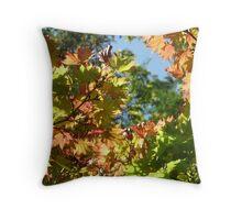 Autumn at Westonbirt Throw Pillow