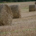 Hay in a field by mrsquickers