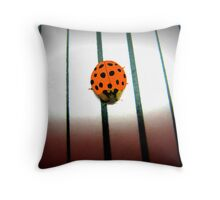 Hiding In The Shadows On My House Throw Pillow