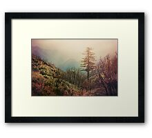 Shining Within Framed Print