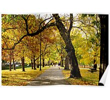 Fall Along the Charles Poster