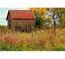 """"""" Meet You Behind the Wood Shed """" Photographic Print"""
