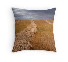 Stormy prairies  Throw Pillow